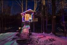 The Lilliputian Life: Tiny House Love / by Alberta Girl