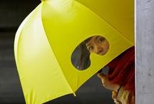 *o* > Umbrellas / by Hélène Braconnier