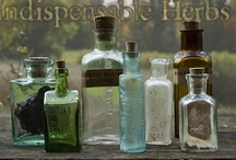 Herbs, Spices & Essential Oils / by Karin