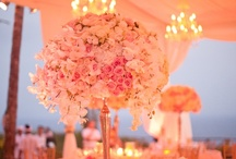 Wedding Loves / by Meghan