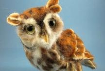 Owls / by Funny Squirrel