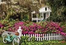 Cottages & Gardens / To me, Cottages & Gardens go together, like Soup & Crackers or Cake & Icing.  I have lived in a big house.  Give me a cute little Cottage with a great garden any day! / by Kathryn Townsend