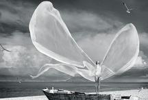 Kinetic Art / by Harmony Hilton