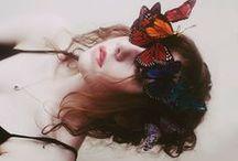 Dreamland  / by Kristen Davenport