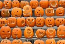 Halloween Pumpkins / by Kristi Davis Maloney