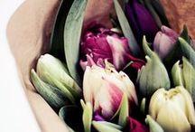 We ♥ Flowers / Everywhere... / by bonprix