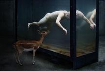 Inspiration / by Mantas Šueris