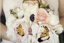 flowers / by Elizabeth Goodnite