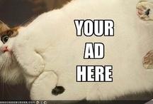 Cat-vertising / by DirectMarketingNews