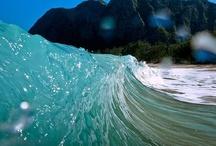 sea|ocean / by Eva Muse