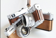 Cameras / by Kelsey Fish