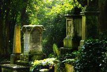 cemeteries / by Eva Muse