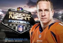 { ☆ Blue and Orange ☆ } / Denver Broncos & Florida Gators / by Jennie Bragg