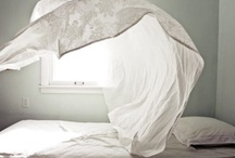 beautiful bedrooms / by ohsoobsessed