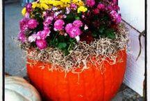 halloween / by Janet Marsh