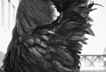 Jacket Love / by Chana Wasserman