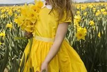 Color [Yellow] / by JaNae Vanderhyde