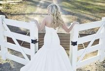 wedding / by Taylor Santos