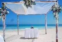 Beach Weddings / by Maria Isabel Gallego