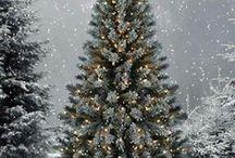 Christmas / by Berneda Miller