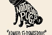pugs and kisses / by Ann Wichterman