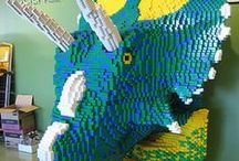 Dino-curiosidades  / by TodoDinosaurios.com