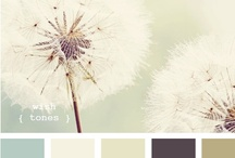 Decorating - Color Pallets / by Amanda Juliana