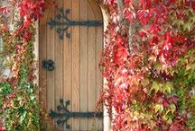 Doors of the World / Interesting doors. / by Meredith Thompson Brooks