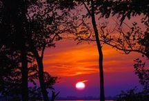 Sunrise, Sunset / by Amy Wolf
