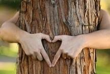 Tree Hugger / by Megan Melbye