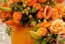 Halloween, Thanksgiving-FALL / by Stephanie Blades