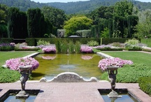 formal gardens / by Catherine Kryger