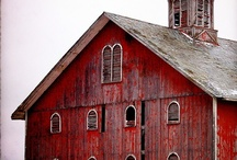 Barns, outbuildings, abandon houses / by Linda Riedell