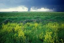 Wild Weather / by AtmosNews : NCAR + UCAR Science