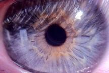 Eyeballs! / by Photojojo