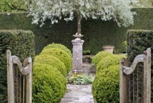 Outdoors spaces/architecture / by Susy teale