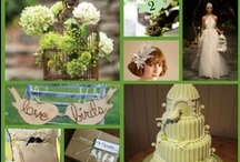 Birds Theme / by Seattle Weddings