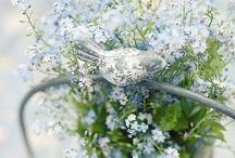 My favorite colour is blue / by Kerryanne @ Shabby Art Boutique