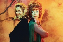 Best Witches / So ... are you a good witch or a bad witch? / by Donna Dupree