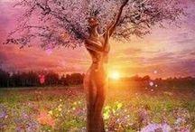 Midsummer / Summer Solstice, Litha / by Kristin W