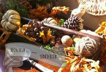 Fall Decor / by Lisa @ Nothing But Blue Skies