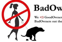 About Us / Dog poo is such a big problem all over the world.  Most people are GoodOwners.  It's unfortunate that the few BadOwners out there are causing such a stink.  Join us in our mission to rid the world of poo or at least have a laugh ;)    www.badowner.org  www.facebook.com/badowner.org     / by BadOwner