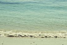 Beachy / by Triptease