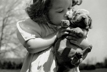 """I'm going to hug you and squeeze you and... / There was a cartoon when I was little with a little girl who would pick up the cat and say """"I'm going to hug you and ..."""" That is how I feel about these pics / by Suzanne Reagan"""