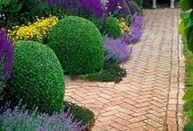 GARDENS / by Lucy Williams