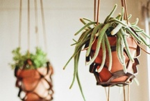 diy: gifts & home. / by Brittany Thaxton