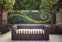 Verde que te quiero verde / patios, jardines, huertos, flores... / by Mar Lopez Maqueda