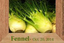 Gluten-Free Fennel Recipes / by Heather