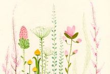 beautiful illustrations  / by Fritha Tigerlilly