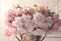 Cottage Whites and other such ideas / by Rhonda Mallery